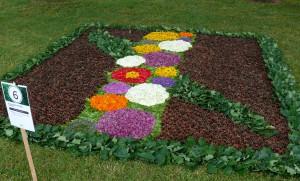 Floristinis kilimas 2