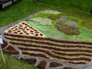 Floristinis kilimas 5