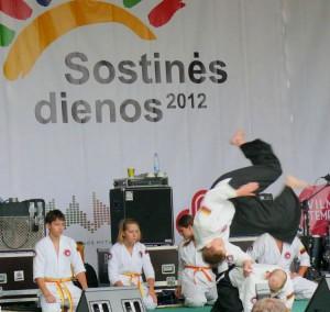 Aikido (10)