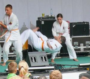 Aikido (8)
