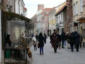 Verbų sekmadienis Vilniuje (19)