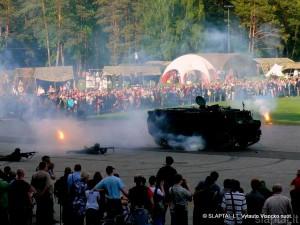 Vingio parke Visuomenės ir kariuomenės vienybės diena (1)