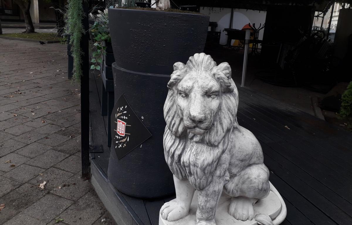 Liūtas liūdnas. Slaptai.lt foto