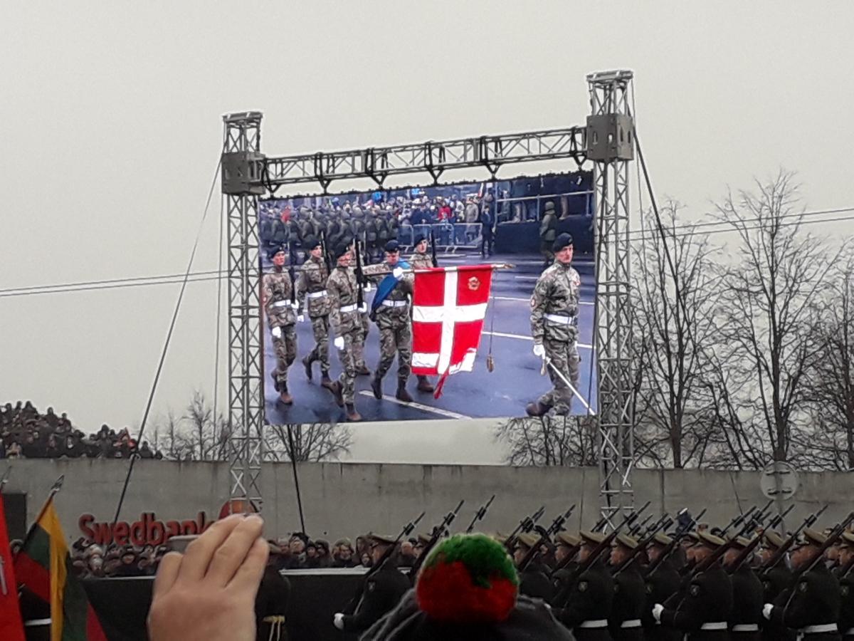 Danijos kariai. Slaptai.lt nuotr.