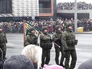 Lietuvos kariuomenei - šimtas metų. Slaptai.lt nuotr.