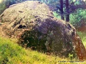 Didysis Dzūkijos akmuo netoli Nemunaičio