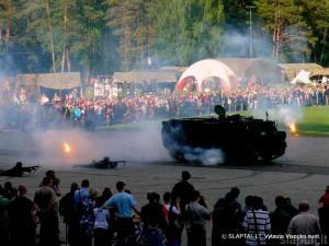 Kariuomenės ir visuomenės vienybės šventė Vilniaus Vingio parke (3)