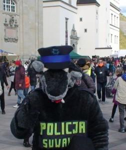 Dar vienas policininkas. Slaptai.lt nuotr.