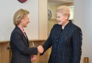 NATO priešakinės pajėgos - Lietuvoje (7)