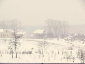 Ūkanotas žiemos rytas