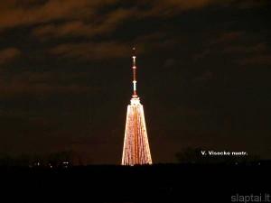 Kalėdinė eglutė (2)