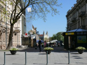 Vilniuje pavasaris (23)