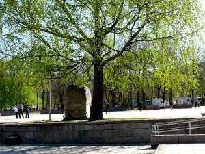 Vilniuje pavasaris (28)