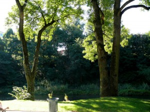 Bernardinų sodas (15)