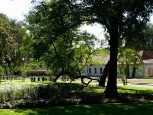 Bernardinų sodas (18)