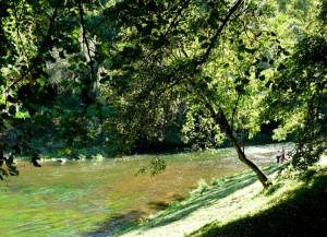 Bernardinų sodas (23)