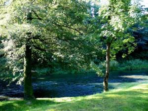 Bernardinų sodas (27)