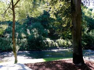 Bernardinų sodas (29)
