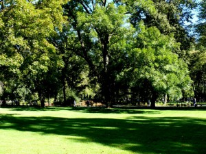 Bernardinų sodas (30)