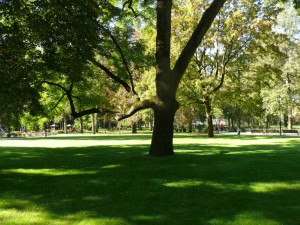 Bernardinų sodas (36)