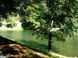 Bernardinų sodas (6)