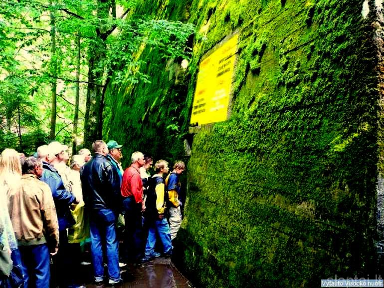 Vilko guolis, kur buvo Hitlerio bunkeris1