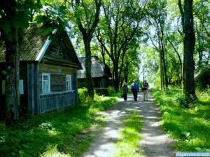 J. Tumo-Vaižganto gimtojo Malaišių kaimo gatvė