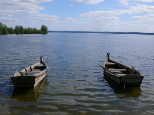 Valtys ežere. Vytauto Visocko nuotr.