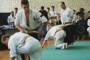 AIKIDO treniruotės (5)