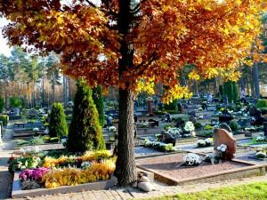 Sudervės kapinės