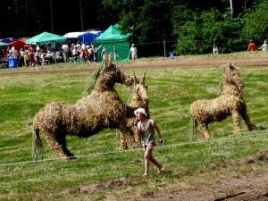 Arklio muziejaus šventėje (3)