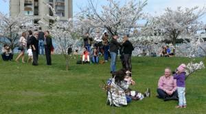 Džiaugiamės pavasariu