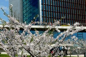 Pavasaris ateina