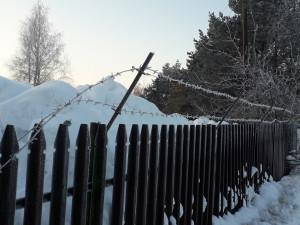 Spygliuota tvora. Slaptai.lt foto
