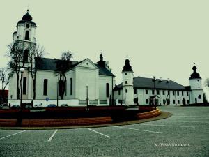 Seinų bažnyčia ir vienuolynas