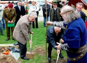 Justinas Marcinkevičius sodina Žalgirio ąžuoliuką šalia Mindaugo paminklo